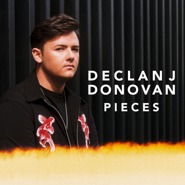 DECLAN J DONOVAN - PIECES